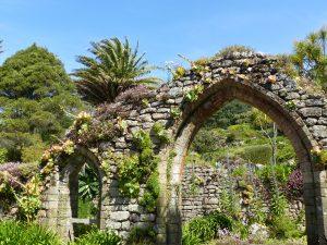 Le Jardin Botanique de L'Abbaye de de Tresco