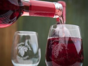 vin-st-martin